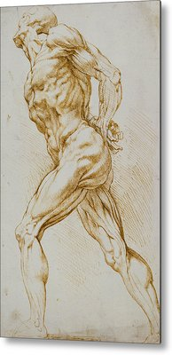 Rubens Drawings Metal Prints