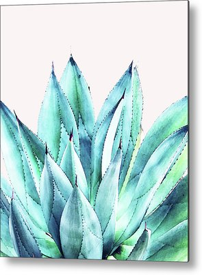 Christmas Cactus Metal Prints
