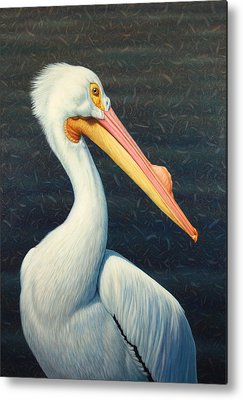 Pelican Metal Prints