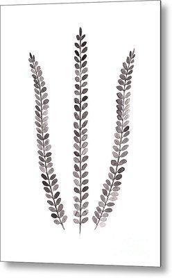 Ferns Metal Prints