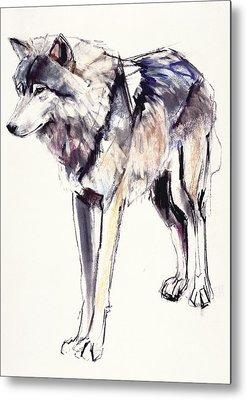 Husky Drawings Metal Prints
