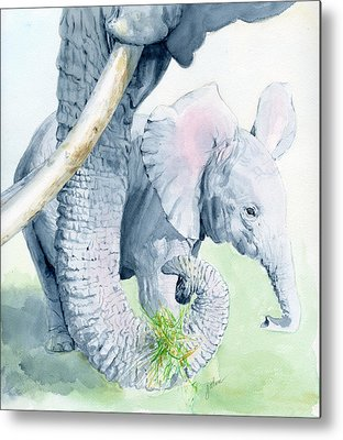 Baby Elephant Metal Prints