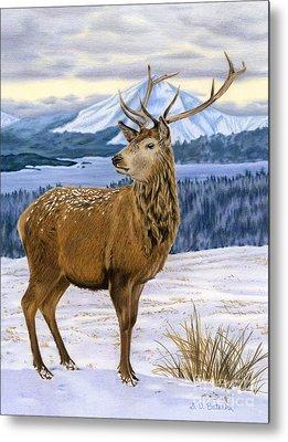 Snow Scenes Drawings Metal Prints
