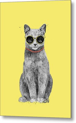 Kittens Cool Metal Prints