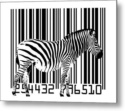 Zebra Metal Prints