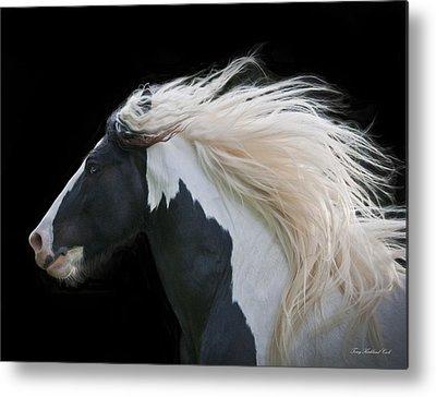 White Horse Metal Prints