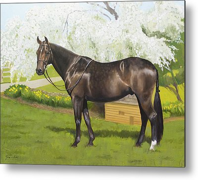 Warmblood Metal Prints