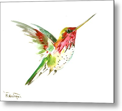 Hummingbird Drawings Metal Prints