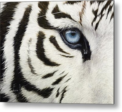 Tiger Eye Metal Prints