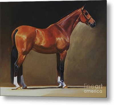Warmblood Horse Metal Prints