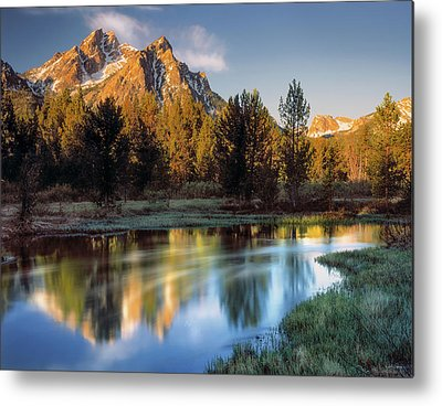 Magnificence Metal Prints
