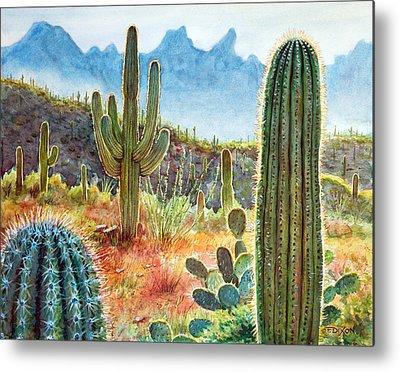 Desert Landscape Metal Prints