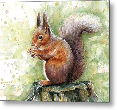 Squirrel Metal Prints