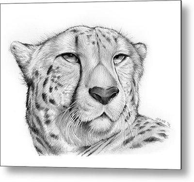 Cheetah Drawings Metal Prints