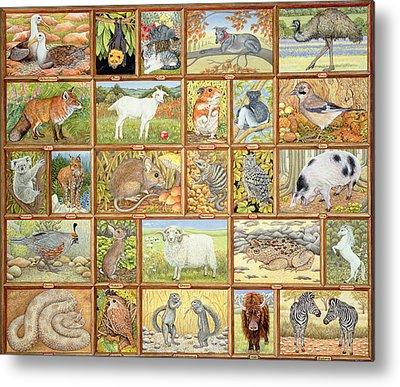 Emu Metal Prints