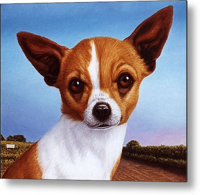 Chihuahua Metal Prints
