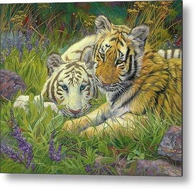 Siberian Tiger Metal Prints