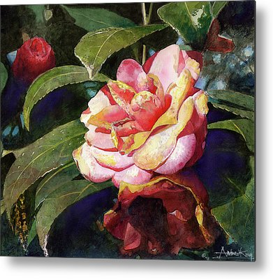 Camellia Metal Prints