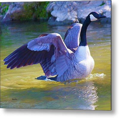 Geese Digital Art Metal Prints