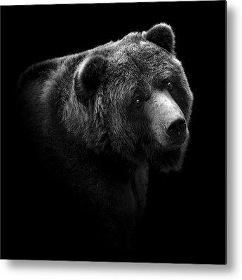 White Bear Photographs Metal Prints