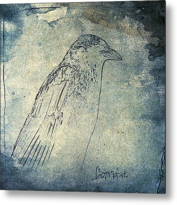 Starlings Mixed Media Metal Prints