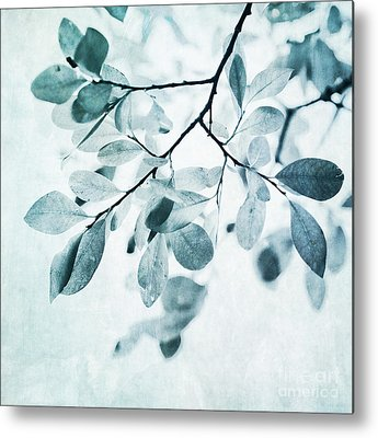Leaves Metal Prints