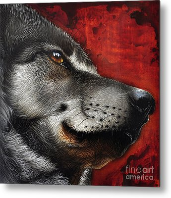 Animal Portraiture Metal Prints