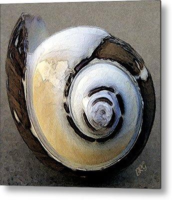 Round Shell Metal Prints