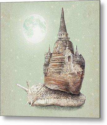 Snail Metal Prints