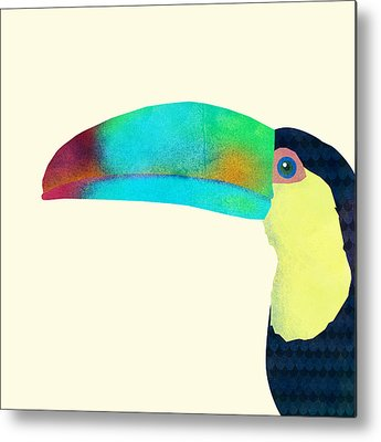 Toucan Metal Prints