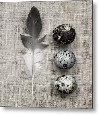 Ornithologist Metal Prints