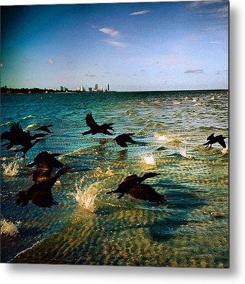 Miami Metal Prints