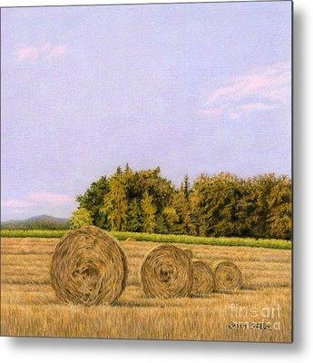 Rural Landscapes Drawings Metal Prints