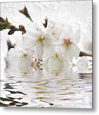 Cherry Blossom Metal Prints