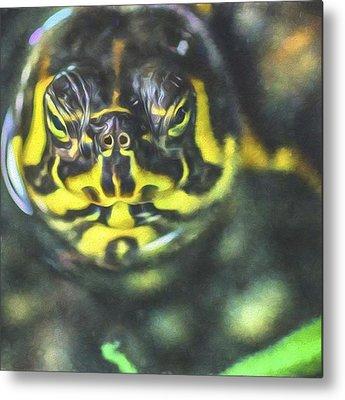 Reptiles Metal Prints