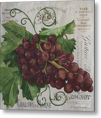 Grape Vine Metal Prints