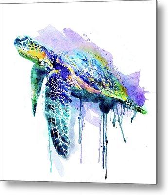 Painted Turtle Metal Prints