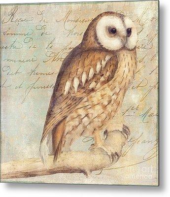 Barn Owl Metal Prints