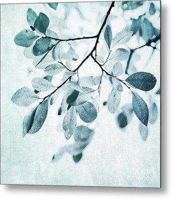 Plants Metal Prints