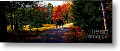 Metal Print featuring the photograph  Acadia National Park Carriage Trail Fall  by Tom Jelen