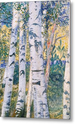 Birch Trees Metal Print by Carl Larsson
