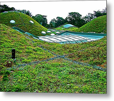 California Adacemy Of Sciences In Golden Gate Park In San Francisco-california  Metal Print by Ruth Hager