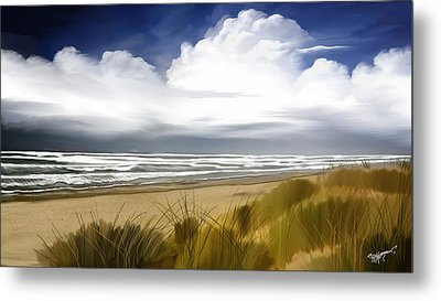 Coastal Breeze Metal Print by Anthony Fishburne