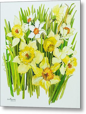 Daffodils And Narcissus Metal Print by Joan Thewsey