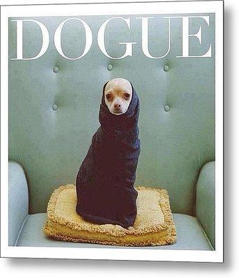 😂😂😂😂 #dogue #vogue Metal Print by Matheo Montes
