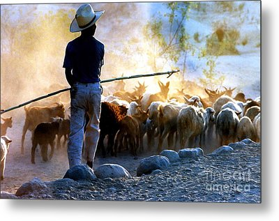 Metal Print featuring the photograph  Herder Going Home In Mexico by Phyllis Kaltenbach