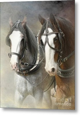 Just Another Day Metal Print by Trudi Simmonds
