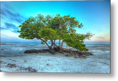 Key West Solitary Existence Metal Print