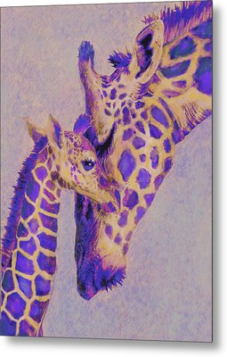 Loving Purple Giraffes Metal Print by Jane Schnetlage