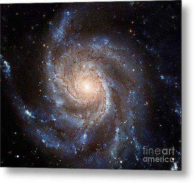 Messier 101 Metal Print by Barbara McMahon